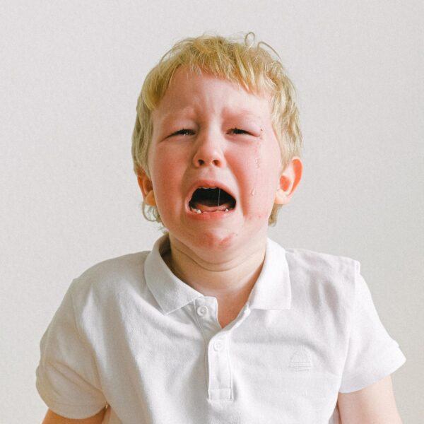 Si-opleiding emotieregulatie